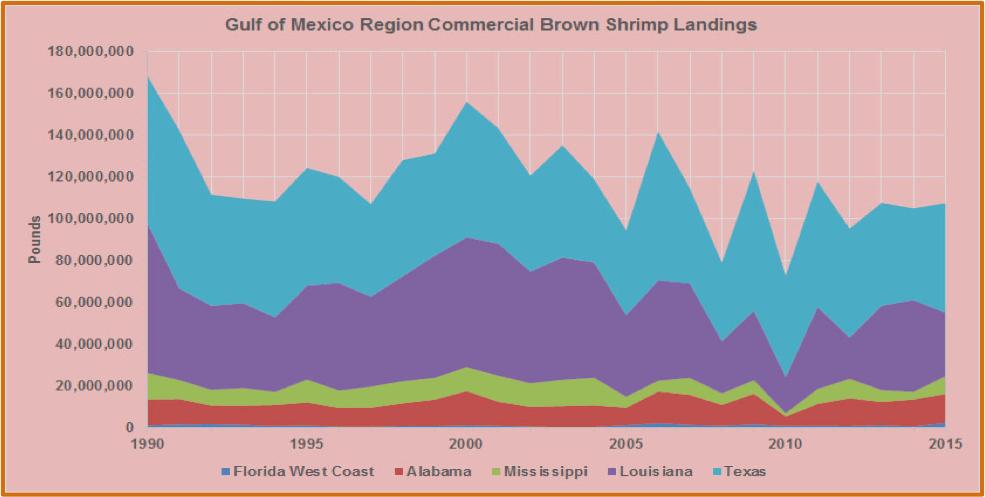 Chart showing the Gulf of Mexico Region Commercial Brown Shrimp Landings