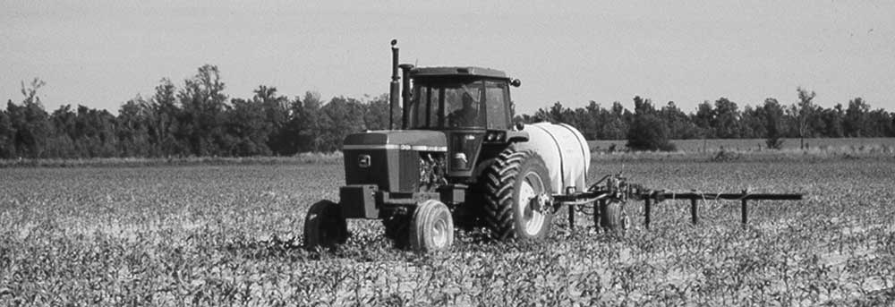 Inorganic Fertilizers For Crop Production
