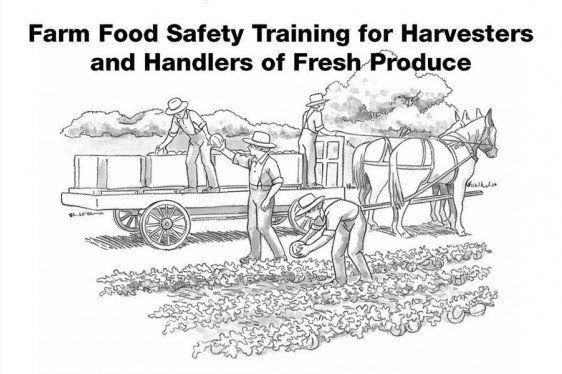 Farm Food Safety Training FLIP CHART for Harvesters and
