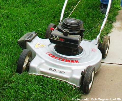 mowers and mowing safety