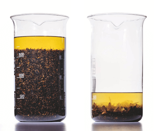 Samples of flying insects collected from identical traps at a site in Krefeld in Germany over a period of two weeks in August 1994 and August 2016
