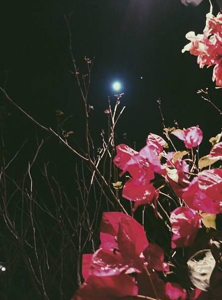 Foto da lua no perfil de Bruna Marquezine