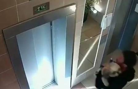Man rescue dog trapped in elevator door