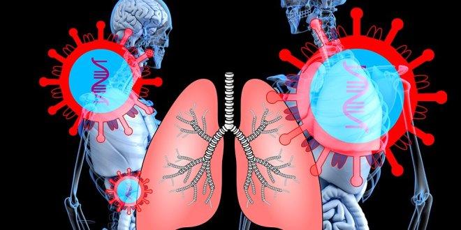 Tupakka, nuuska ja keuhkosairaudet lisäävät riskiä sairastua koronaan