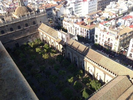 The Court of Oranges in Seville Cathedral, aerial view, Spain