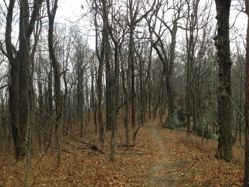 The trail of Harkening Hill.