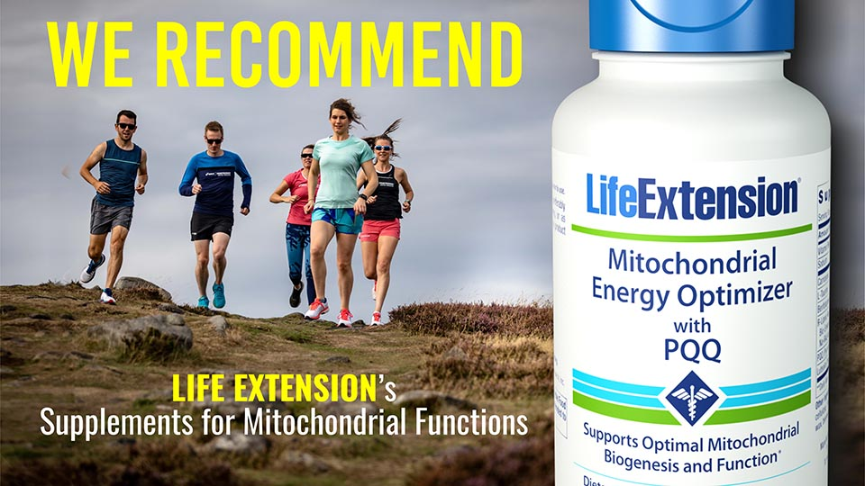 Mitochondrial Energy Optimizer with PQQ:Energize every cell in your body! 2