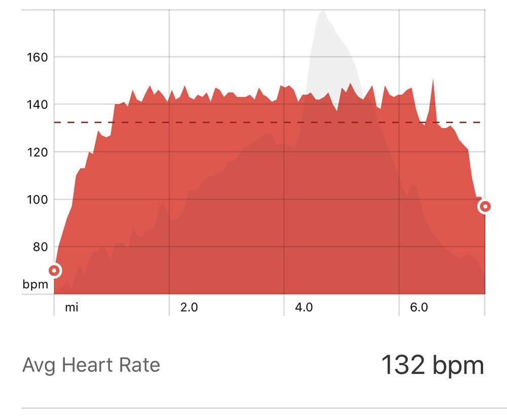 heart rate strava for warm up and cool down running
