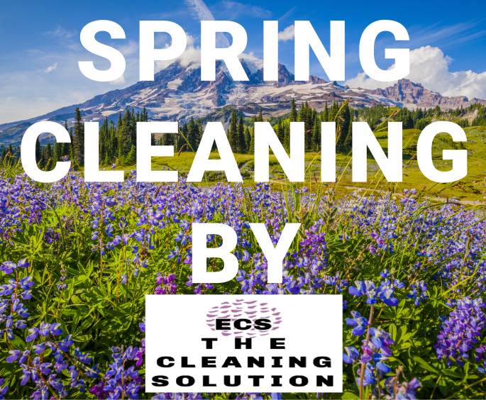 Spring cleaning ECS