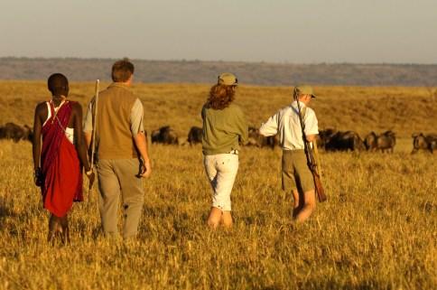 Walking Safari from Il Moran Masai Mara