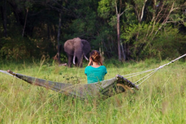 Hammock at Elephant Pepper Camp