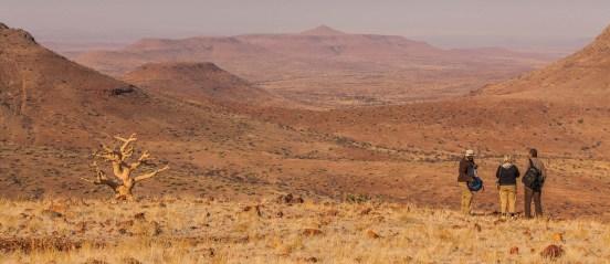 Self drive safari in Namibia