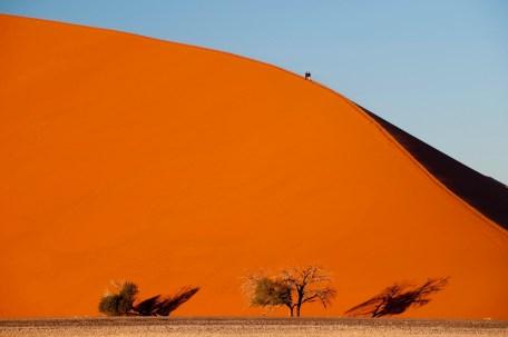 Dunes near Kulala Desert Lodge