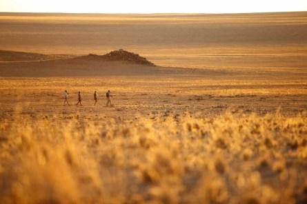 Nature Walk at Sossusvlei Desert Lodge