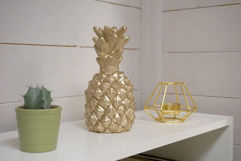 Ornamental Gold Pineapple in my out door garden office extraordinarychaos.com