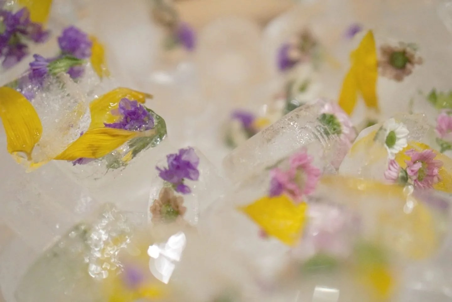 Floral Ice Cubes www.extraordinarychaos.com