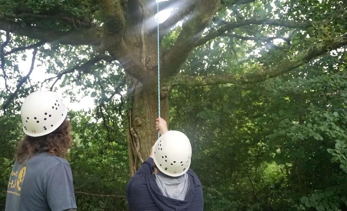 Tree climbing in Wales www.extraordinarychoas.com