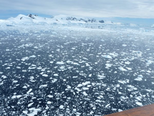 Antarctic ice floes can appear small at first