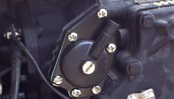 How to Inspect Reed Valves on a Johnson 40hp Outboard - Extreme DIY