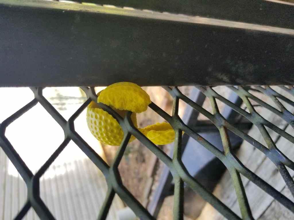 Shredded Practice Golf Ball Shot Through Air Cannon
