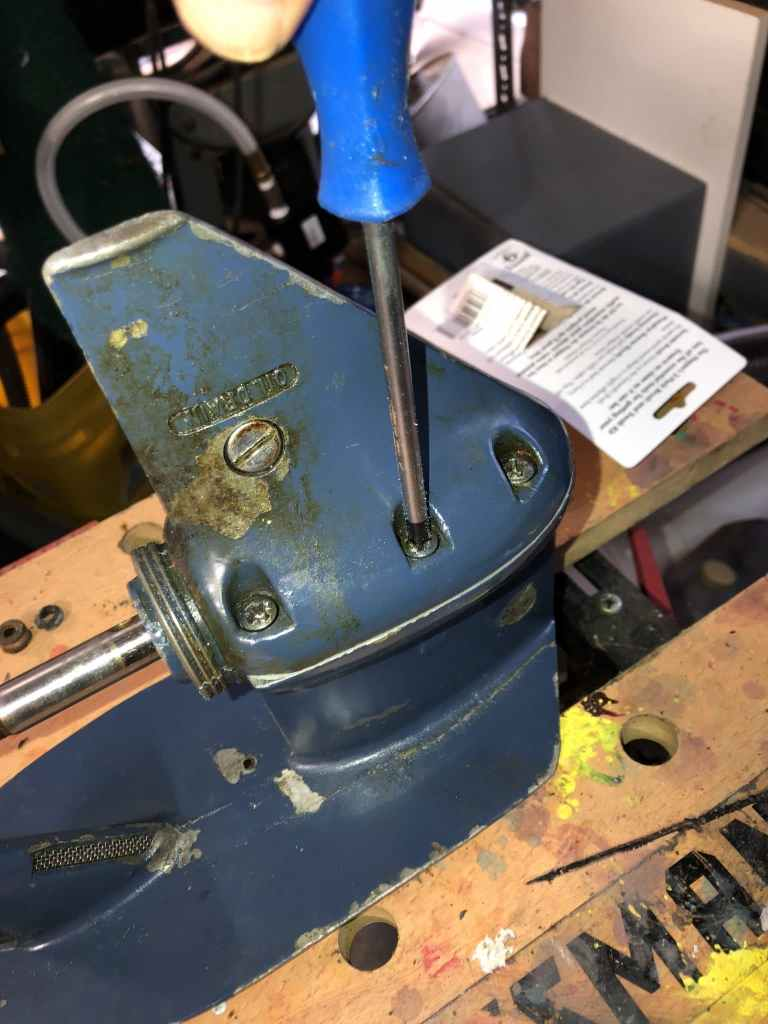 Evinrude Johnson Lower Unit Skeg Screws