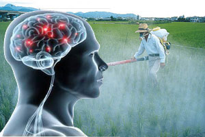 Pesticide exposure and brain function
