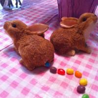 The Bunny Who Pooped Jellybeans
