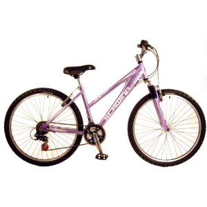Photo of the Schwinn Women's SX2000 Bicycle