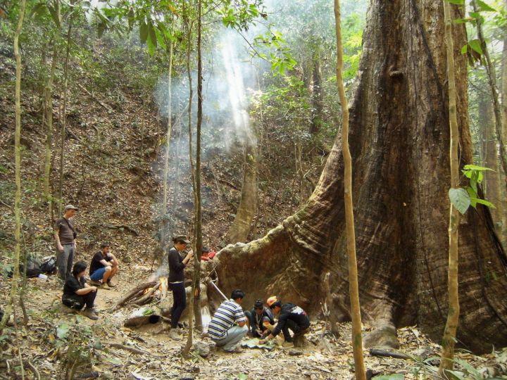 Nam Ha National Park, Laos