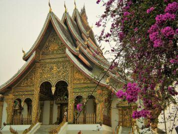 Templo y buganvilla en Luang Prabang