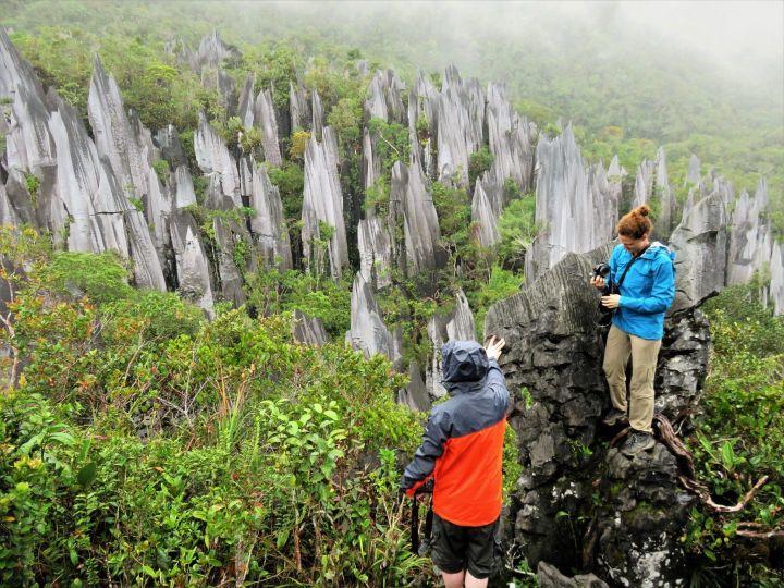 Agujas calcareas, Gunung Mulu, Malasia, Borneo