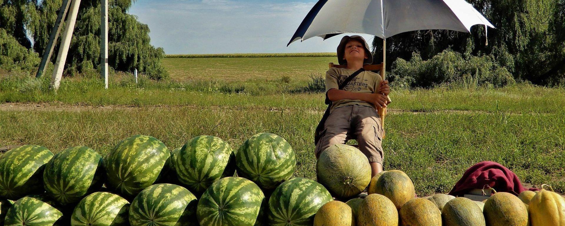 Moldavia, niño vendiendo sandías