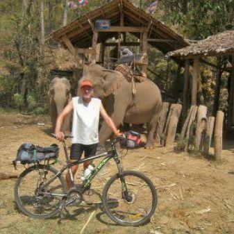Explotación de elefantes