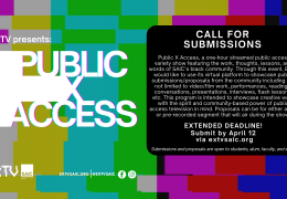 Call for Submissions: Public X Access