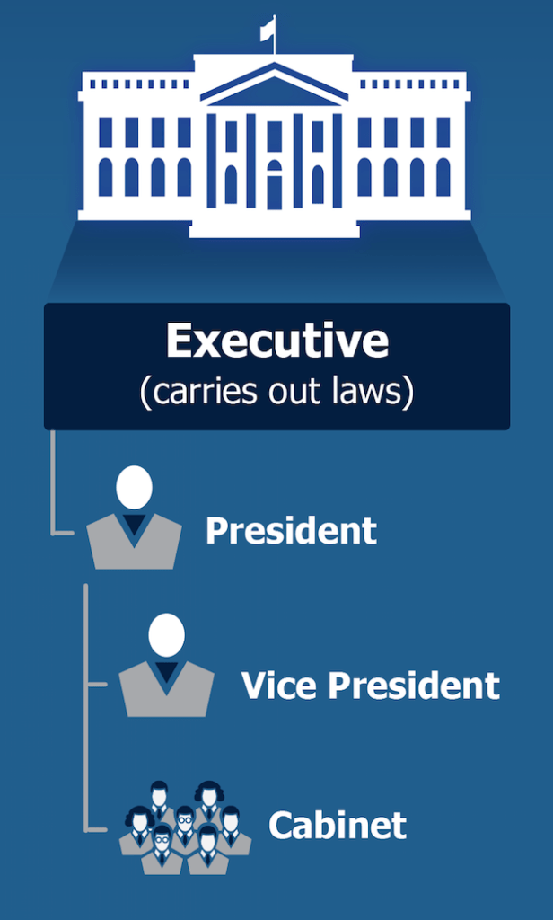 Executive Branch of Gov 7 24 2019