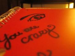 Day 61 9/10/13 My Planning Notebook Eye