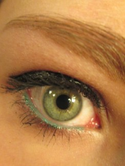 Day 313 5/20/14 Colorful Waterline Eye