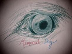 Day 319 5/26/14 Memorial Day Eagle Eye