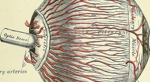 what are the causes of glaucoma other than high eye pressure