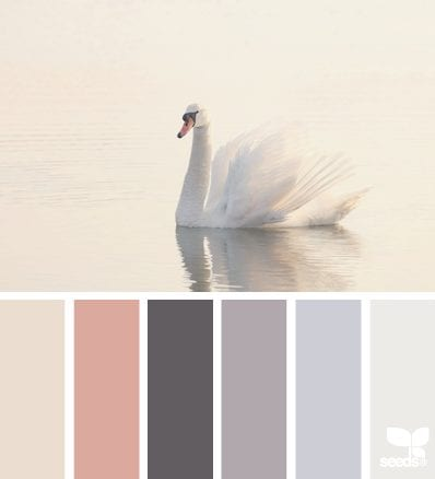 Design Seeds Swan Tones