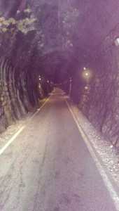 Devonshire Tunnel