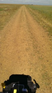 Dirt road littered with stones.