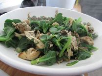 Delicious wild spinach and oyster mushrooms stir-fried.