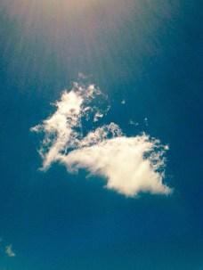A summer cloud