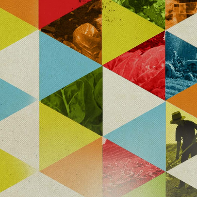 Whole Foods Branding and Design Header, Triangles