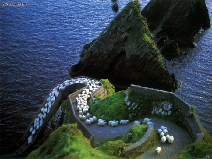 AD-Heres-Why-You-Definitelt-Need-To-Visit-Ireland-13