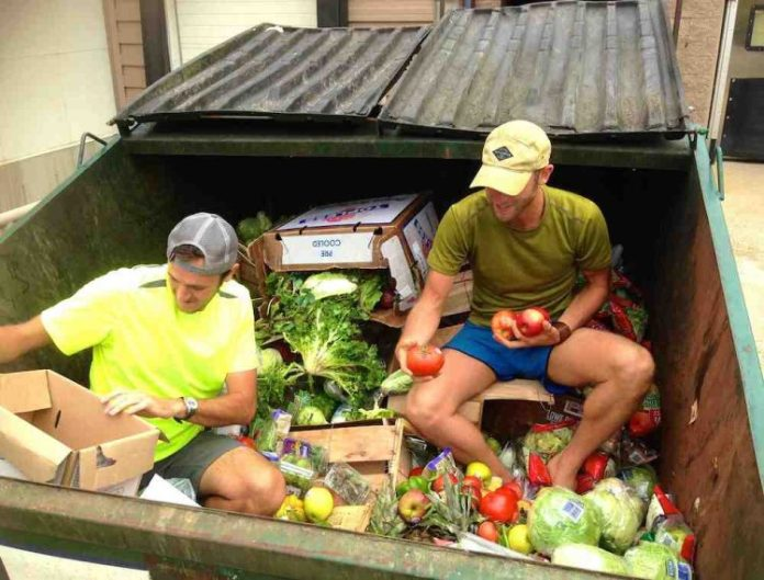 rob-greenfields-guide-to-dumpster-diving-9