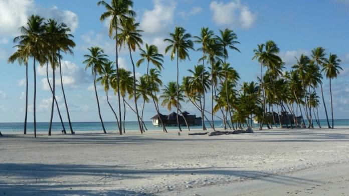lankanfushi-673451_1920