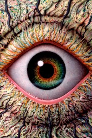 NATO eye