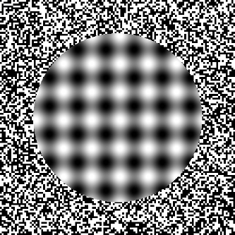 """kitaoka out of focus"" image"